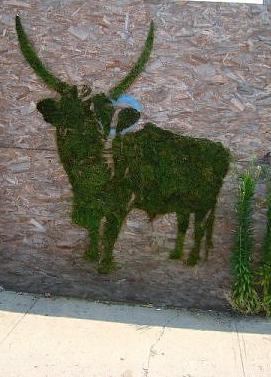 faça sua própria green graffiti