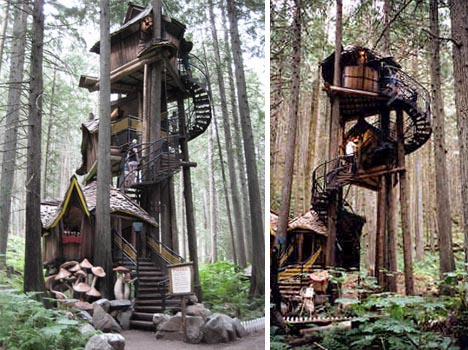 fantasy-forest-treehouse