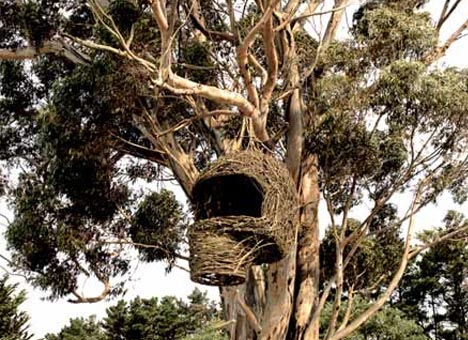 organic-tree-house-exterior