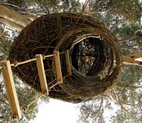 organic-tree-house-up