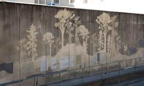 """Projeto de """"Reverse Graffiti"""" em São Francisco"""