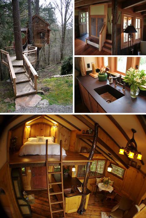tree-house-interior-exterior