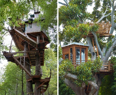 tree-house-modern-building