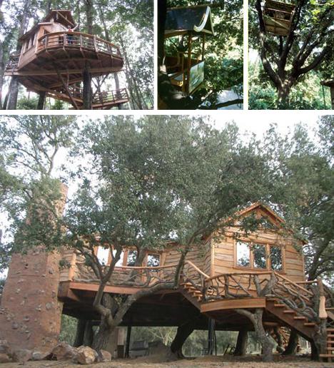 tree-houses-tall-short