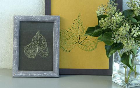 quadros de folhas secas
