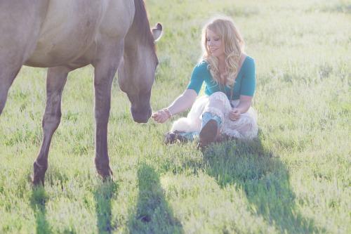 horse-937767_1920